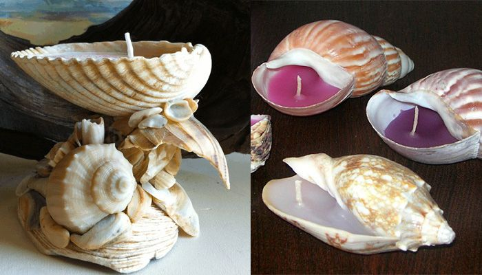 handmade creativity decoration candles homedecor diy creativeidea shells seashells seashellcandles homamade ideaforhome