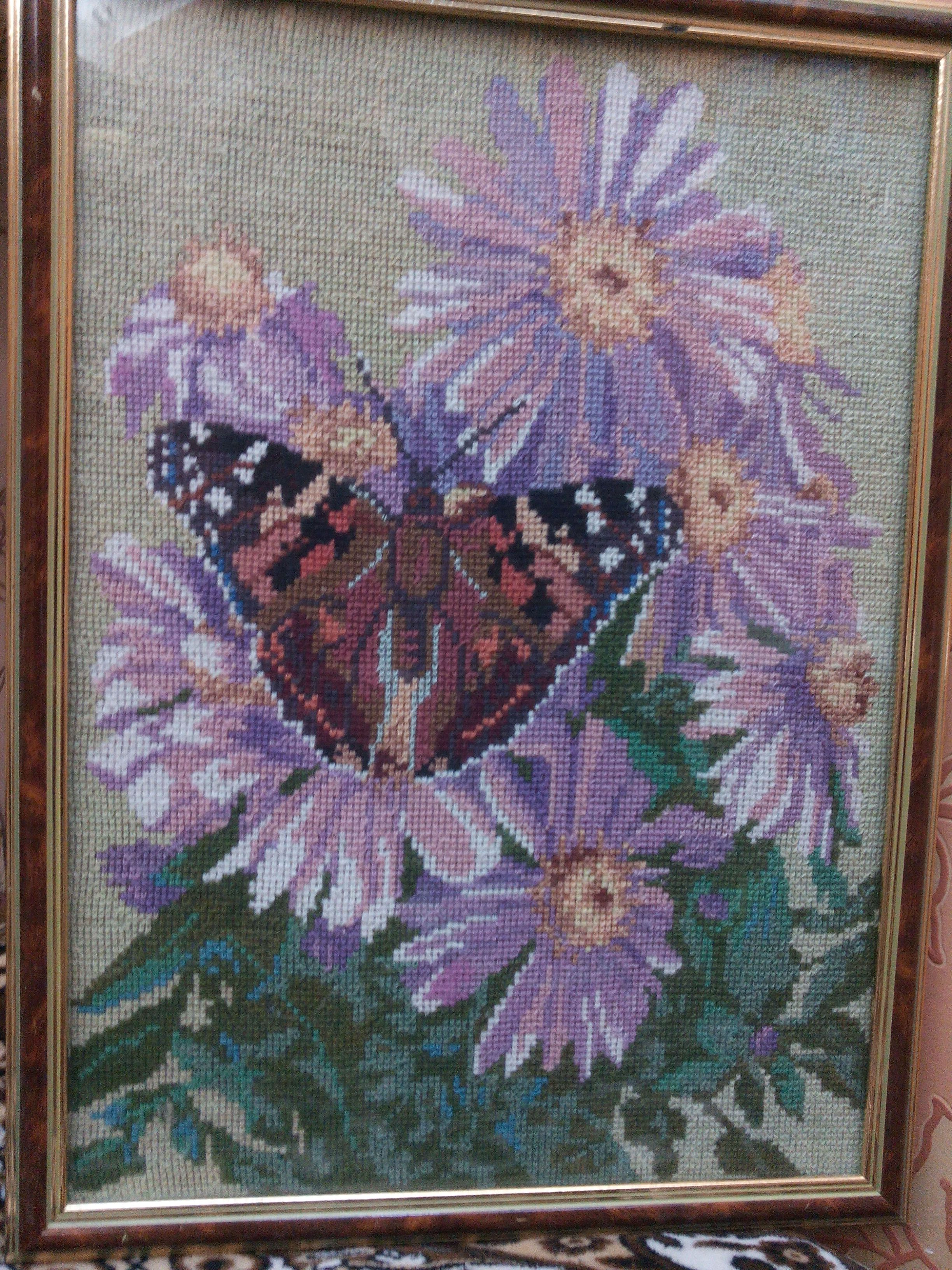 picture butterflies