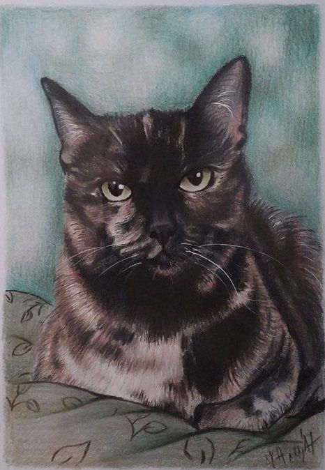 animalart coloredpencils birthdaygift petportrait giftideea dogportrait catportrait customportrait artwork