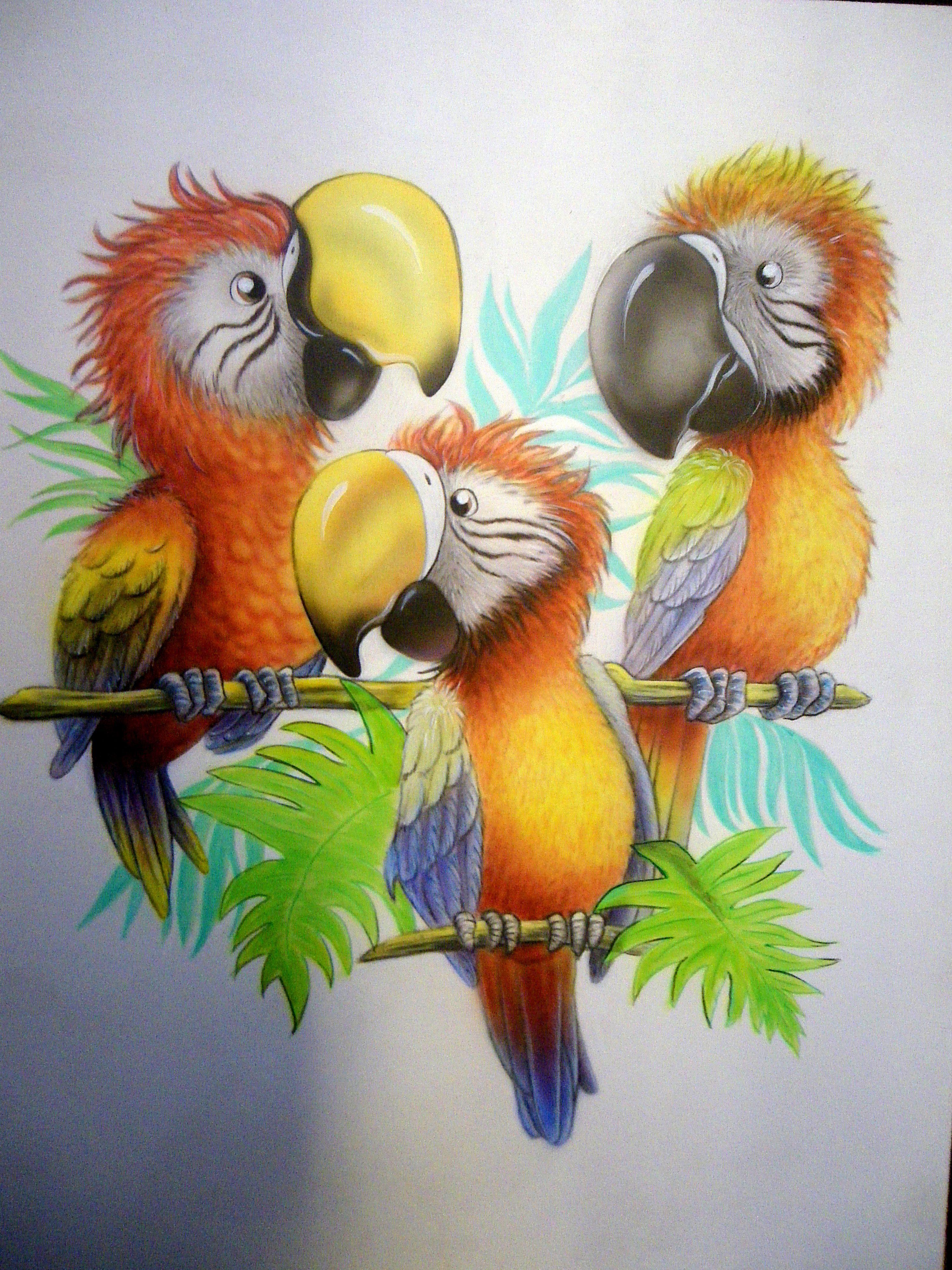 painting parrots aerographics acryl