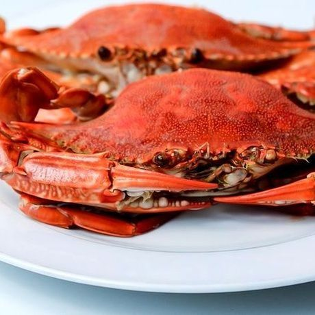 cook cookery crab recipe steps