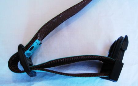 pets dog animals collar make