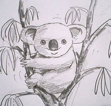art pencil koala bear draw