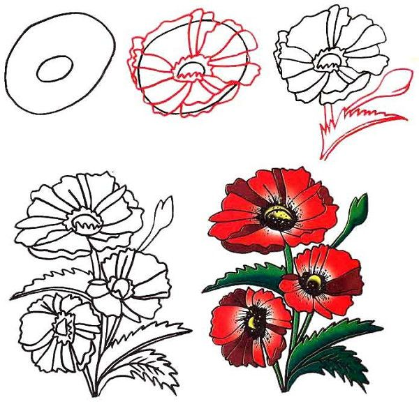 color simple draw flower art