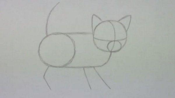 cat kitten draw shadows art