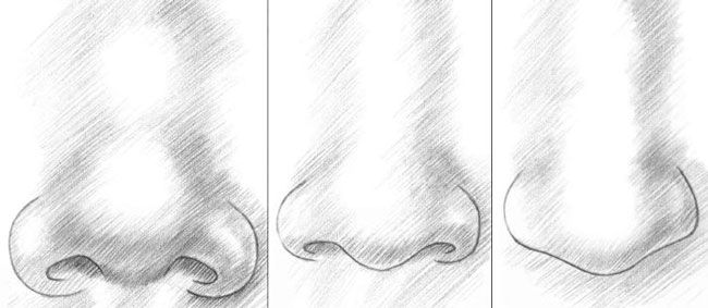 how to draw a human nose step by step