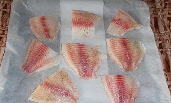 cookery tilapia cook ingredients recipe