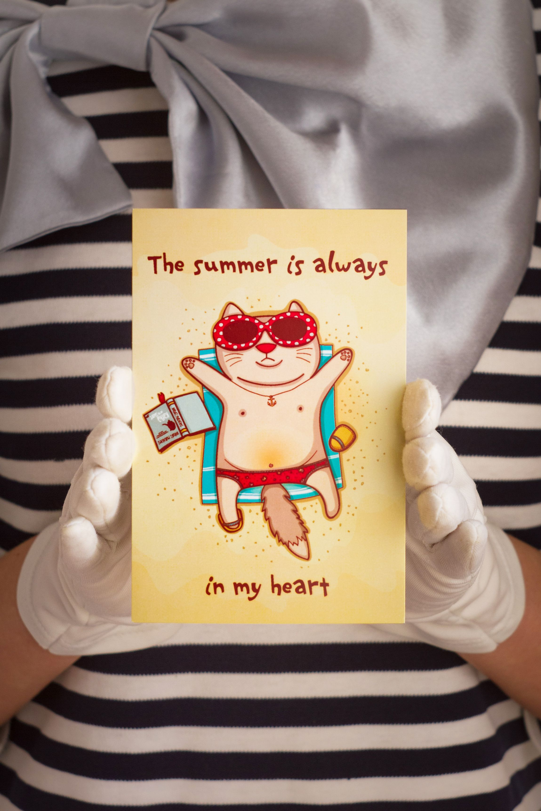 cat surprise present postcard summer