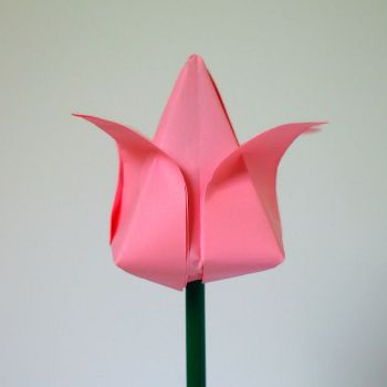 flower origami tulip paper crafts
