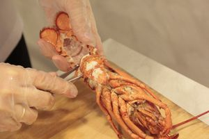 cookery lobster cook tail recipe