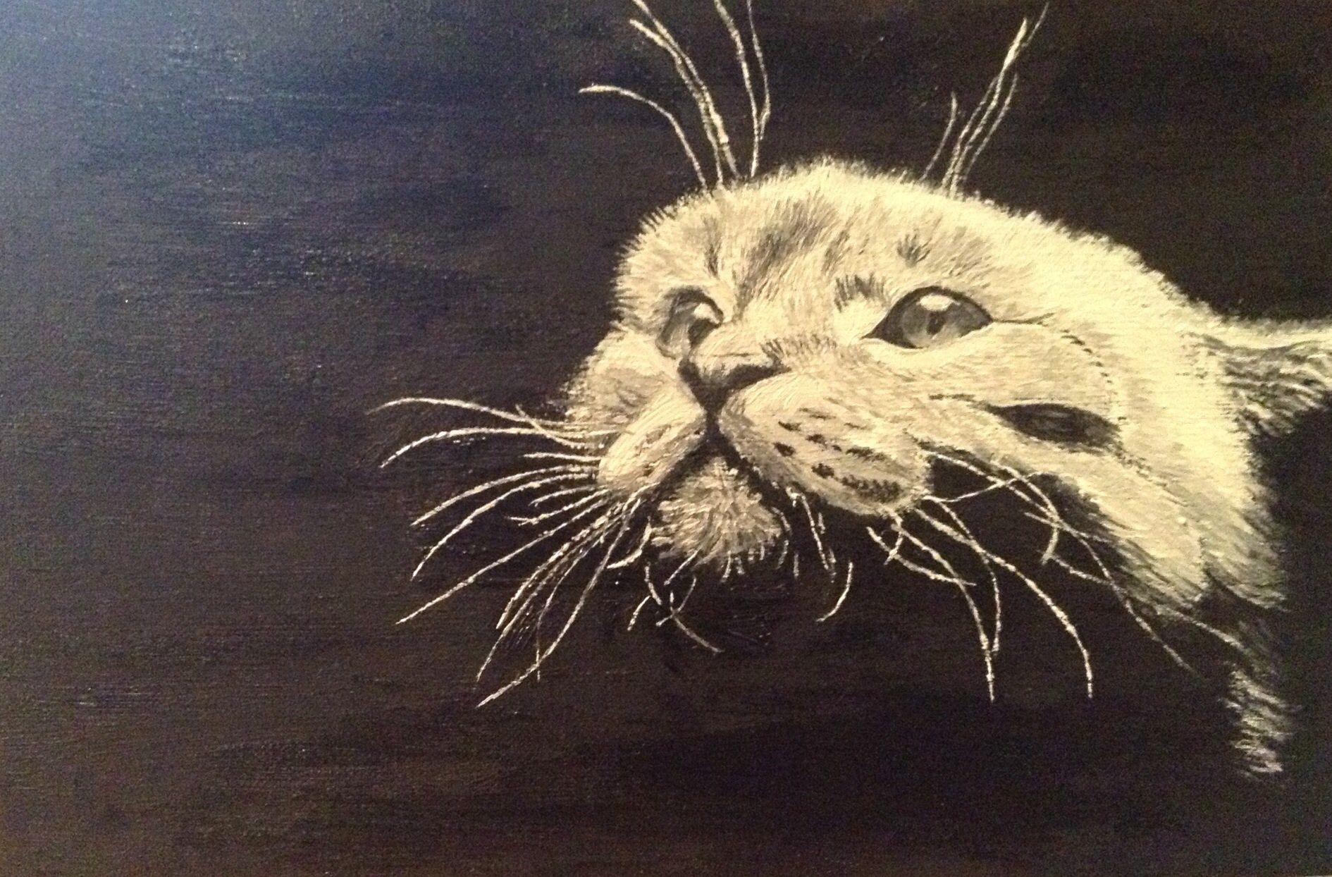 art cat painting oils
