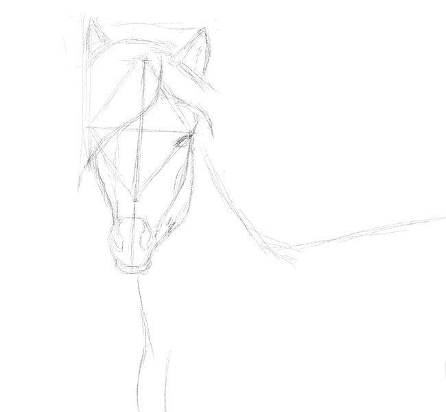 stepwise horse draw pencil art