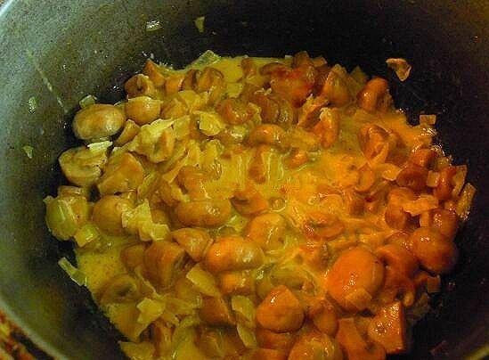 cookery champignons mushrooms cook recipe