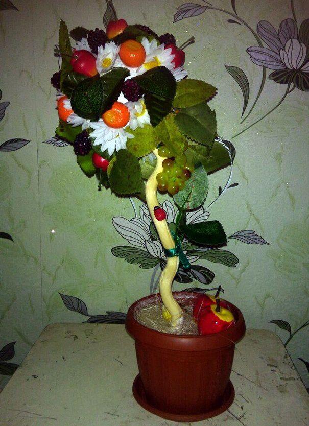 tree green fruits plant
