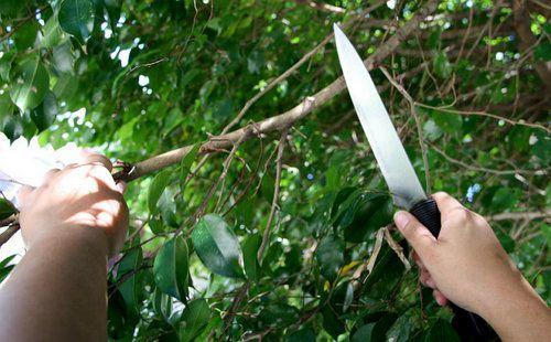 wooden wand handicrafts instructions make