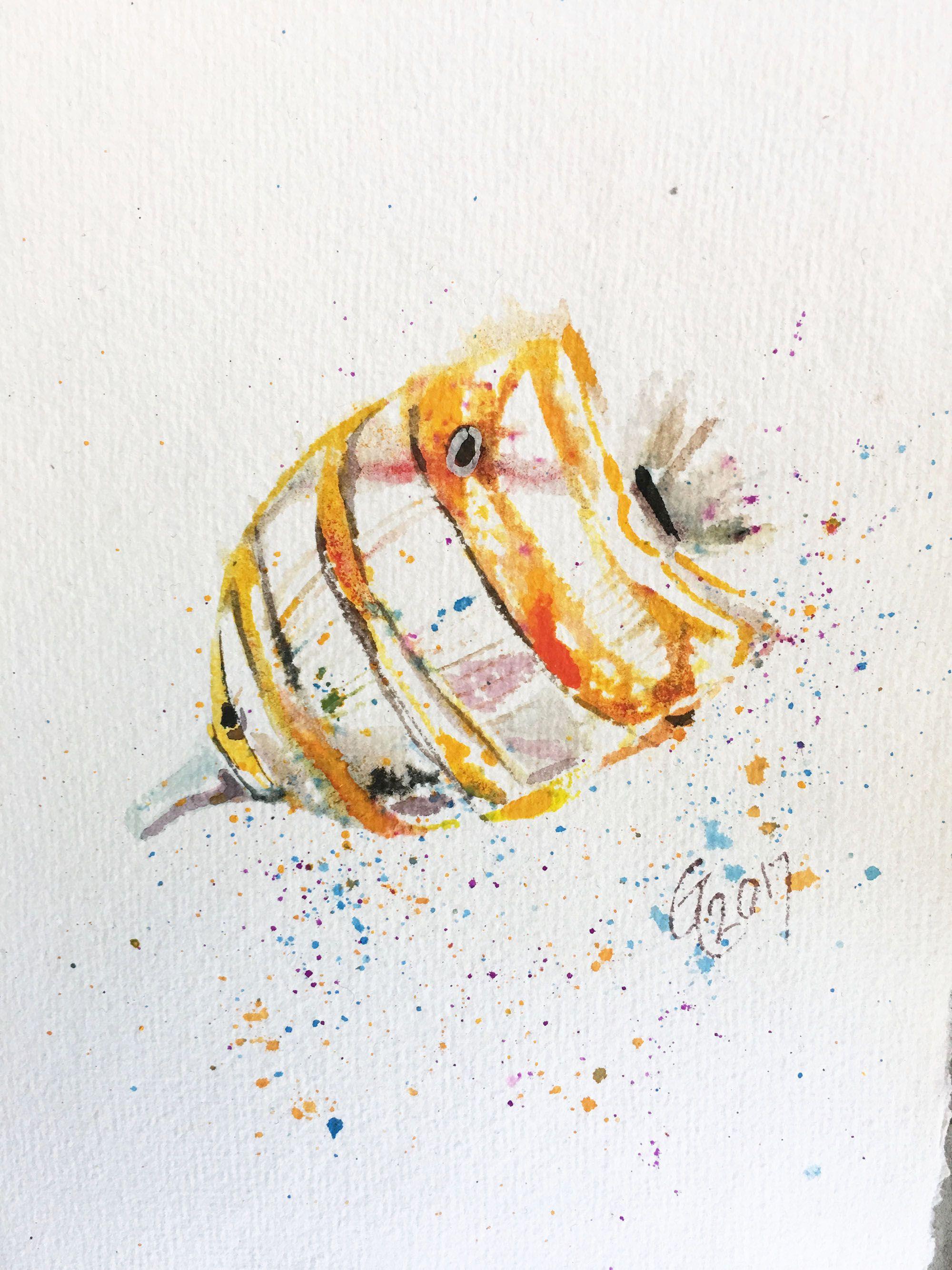 fish watercolor original home art decor theme ocean beach