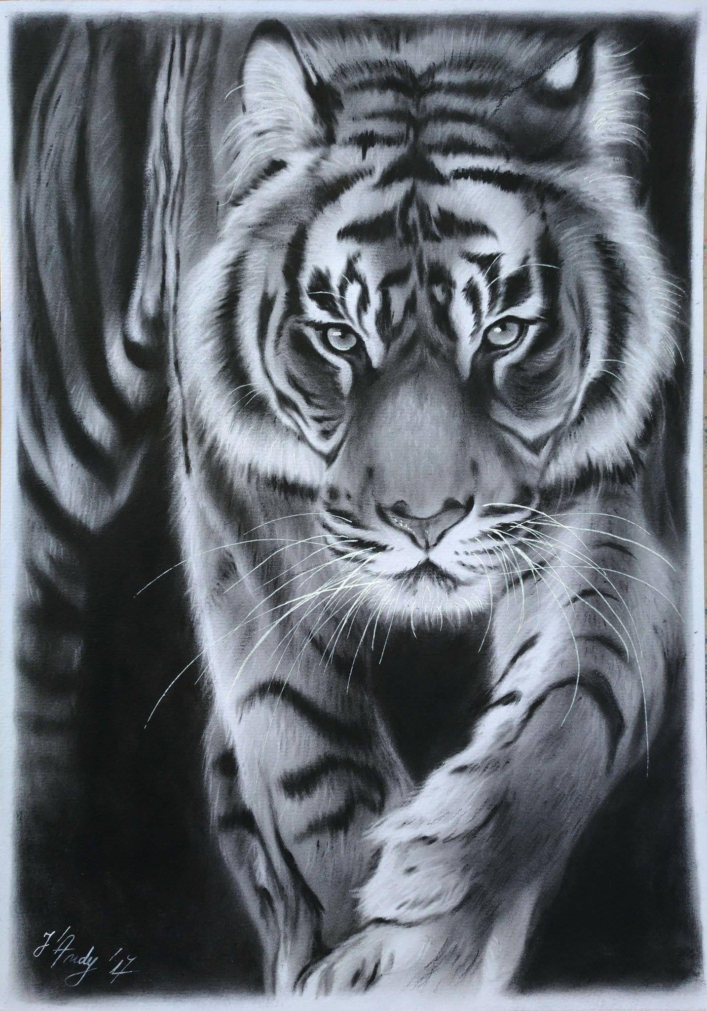 wallart tiger tigerart animaldrawing wildlifeart animalart oilonpaper originalart artwork