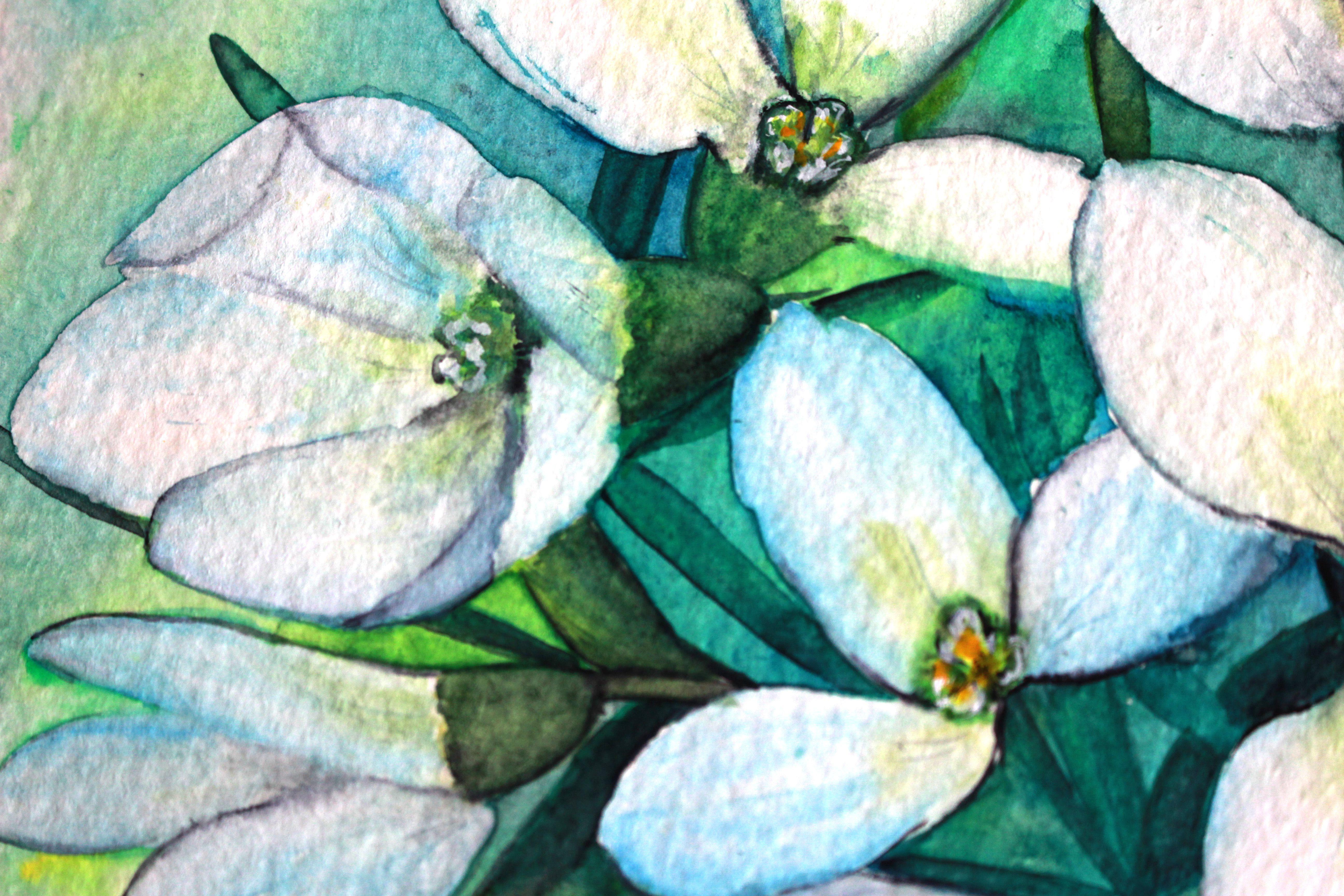 wallart springflowers snowdrops whiteflowerart interiorart watercolor flowerpainting homedecor