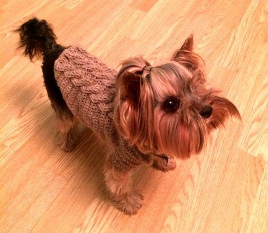 goods pets sweater animals crochet dog textile