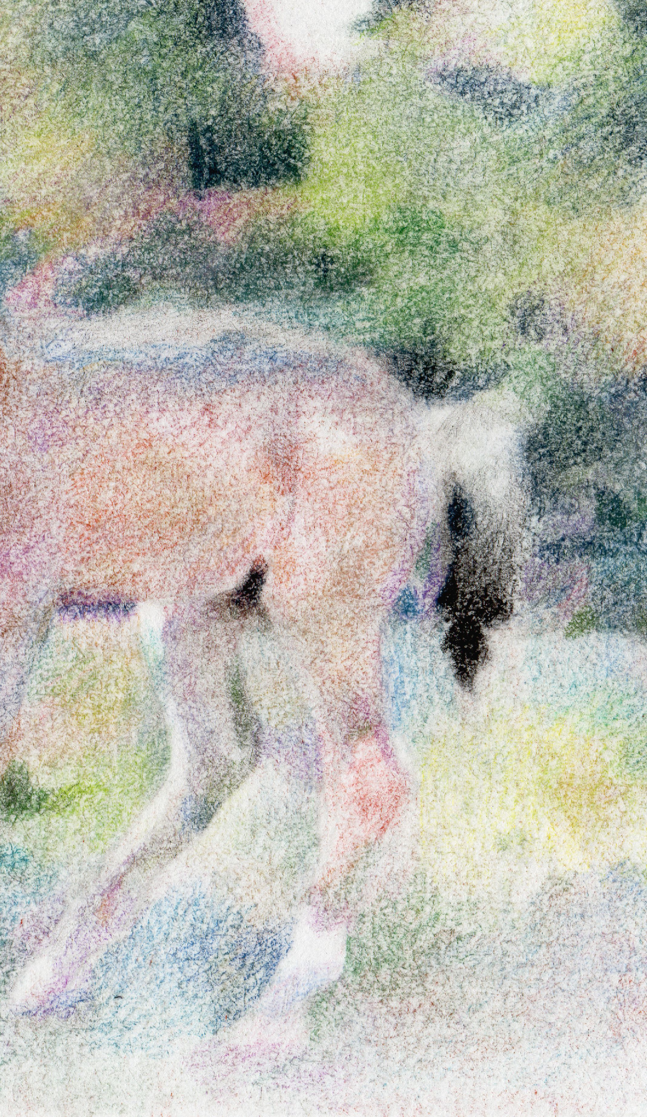 horses original visual illustration baby dry foal rainbow soft nursary child positive drawing picture pastel peaceful art
