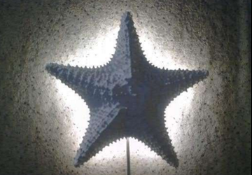Handmade star-shaped lamp