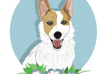 Custom Pet Portrait - Cute Dog Portrait