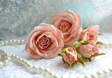 """Hair-pins """"Rose Tenderness"""""""