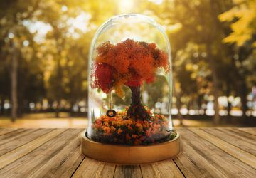 Autumn Terrarium Kit, Autumn decorations, Autumn Leaves, Fall Decor, Fall, Fairy Garden with Tire swing, Autumn Wedding, Fall Decorations,