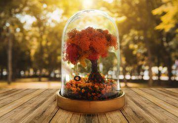Autumn Terrarium Kit, Autumn decorations, Autumn Leaves, Fall Decor, Fall, Fairy Garden with Tire swing, Autumn Wedding, Fall Decorations,