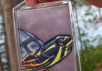 Painter Turtle 2x3 Photo Keychain | Each Copy is Handpainted | Perfect For Reptile Lovers | Back to School Accessory