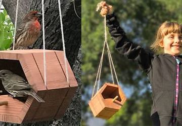 KIDS Workshop - Bird Feeder