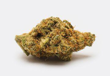 Buy Black Cookies (AAA) Weed Online   Buy from Chronic Store