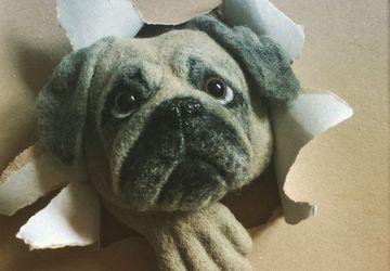 Dog portrait Framed wall decor Needle felting Pet portraits custom