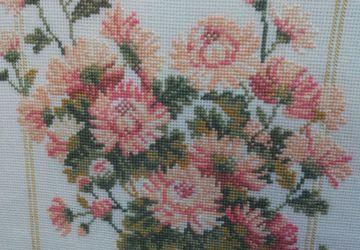 Tender chrysanthemum