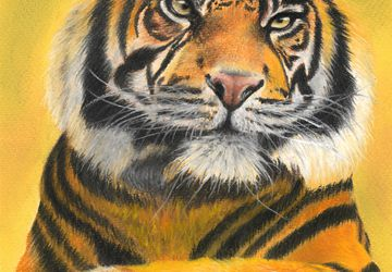 Tiger | Wildlife painting in soft pastels