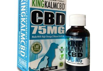 CBD Oil for Cats | King Kanine