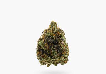 Buy Flower In Hamilton @ Stoni Cannabis | Captain Pink (AAAA) Indica