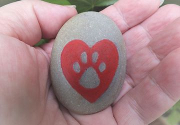 Paw print on your heart pebble
