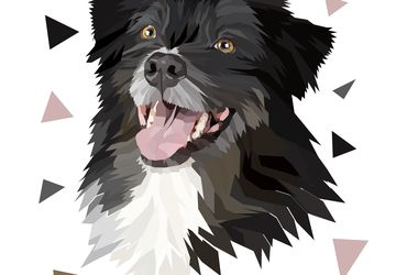 Custom Pet Portrait From Photo