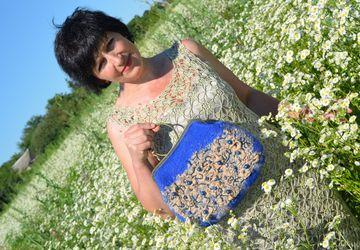 "A woman's bag ""A cornflower"""