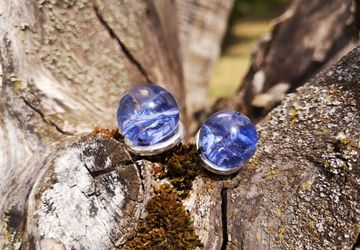 Blue cornflower earrings