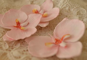 Orchid hairpins