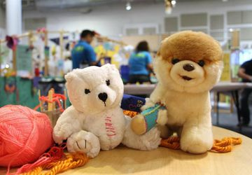 Stuffed Animal Repair Program