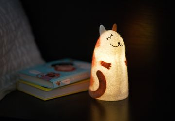 Red Cat felt lamp