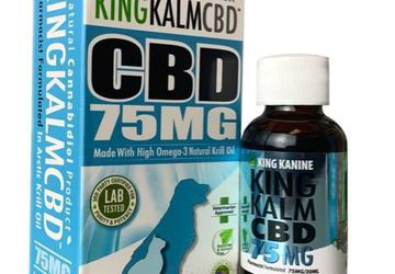 Cat and Small Dog CBD Oil | CBD Combined with Krill and Hemp Oil