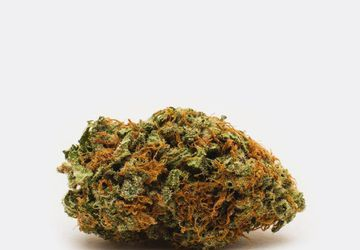 Buy Cheap Violator (AAA) Weed Online   Highly Potent Strain