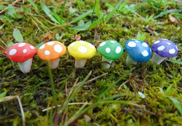 Rainbow Fairy Garden Mushrooms
