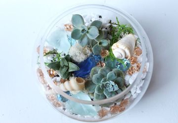 GTB Brunch x Craft - Terrarium Building Workshop