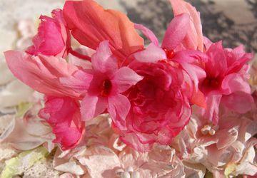Cherry Rose wristlet