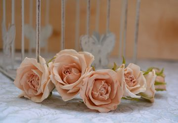 Headband with ivory-colored roses